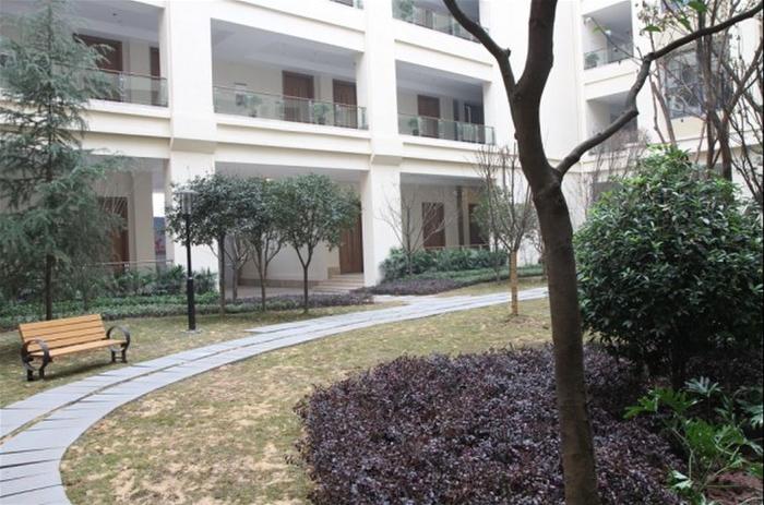 教学楼内院